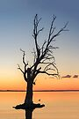 Sunset Lake **SPECIAL OFFER ** by Raymond Warren