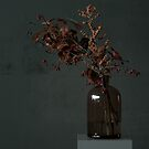 Autumn Bottle and Twigs Full by BBB3viz