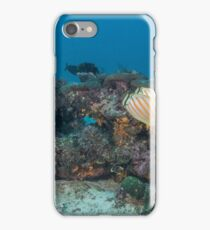 Patch Reef with Butterflies iPhone Case/Skin