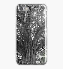 Cemetery Graveyard iPhone Case/Skin