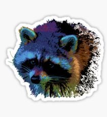Raccoon cartoon Sticker