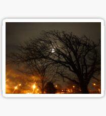 The Moonlit Tree. Sticker