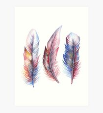 Whimsical Watercolor Feathers Art Print