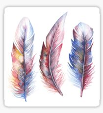 Whimsical Watercolor Feathers Sticker