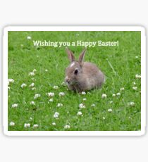 Easter Bunny Wishes - NZ Sticker