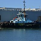 NEWCASTLE TUG DARLING. by Phil Woodman