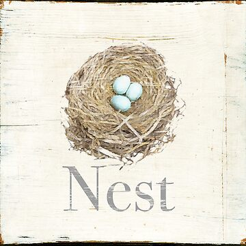 Nest by TerriEllisPhoto