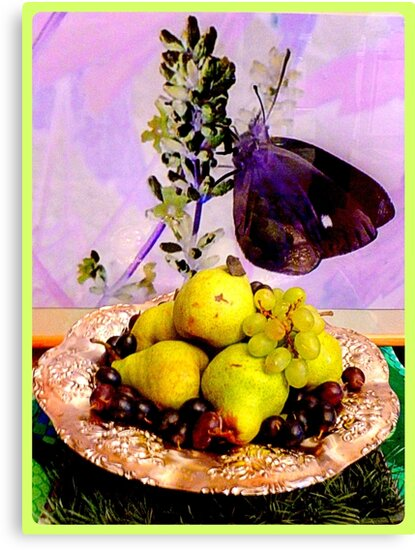 Pears ~ Grapes ~ Butterfly by ©The Creative  Minds