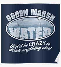 Ogden Marsh Water Poster