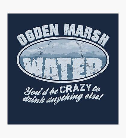 Ogden Marsh Water Photographic Print
