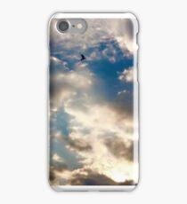 whim iPhone Case/Skin