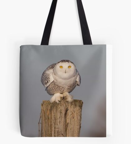 Snowy Owl prepares for liftoff Tote Bag