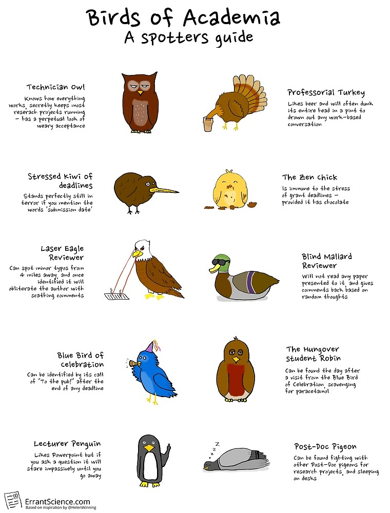 Birds of academia, a spotters guide by ErrantScience