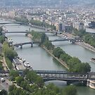 Paris river, buildings ...and view by fladelita
