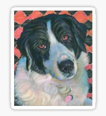 Border Collie Beauty Sticker