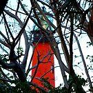 Lighthouse  by Daniel  Oyvetsky