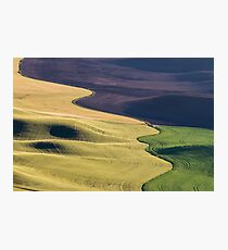 Palouse Canvas Photographic Print