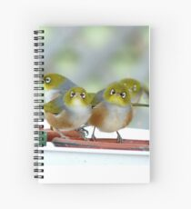 Excuse Me Waiter... But...Where Is The Main Course? - Silver-Eyes - NZ Spiral Notebook