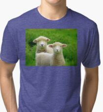 The Red Bubble Definition of Cute! - Lambs - NZ Tri-blend T-Shirt
