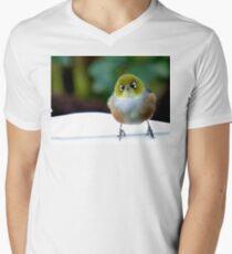 Little boy lost! - Silvereye - Wax Eye - New Zealand T-Shirt