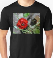 The Bumble & The Poppy - NZ T-Shirt