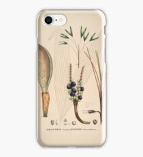 Historia naturalis palmarum, opus tripartitum (Natural History of Palms in 3 volumes) iPhone Case/Skin