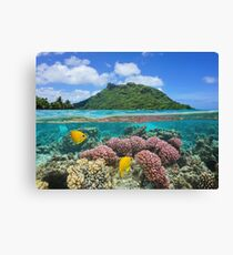 Island coral and fish underwater French Polynesia Canvas Print