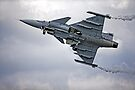 Swedish Air Force Saab JAS 39C Gripen  by Andrew Harker