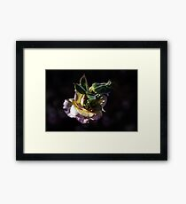 From Within... How Is It Possble? Framed Print