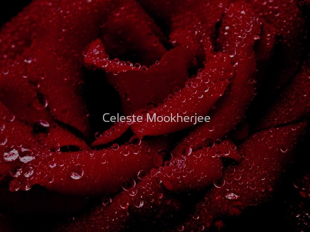 Dark beauty by Celeste Mookherjee