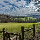 View on the final stretch Buckinghamshire by Robertsphotos