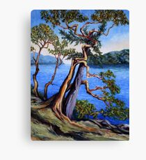 Southern Gulf Islands Afternoon Canvas Print