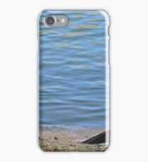 Two cormorants. iPhone Case/Skin