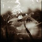 Double Exposure by mewalsh