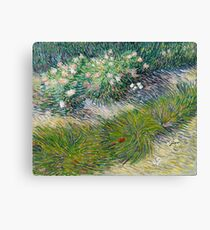 1887-Vincent van Gogh-Grass and butterflies Canvas Print
