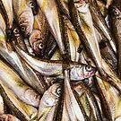 Fresh Fish Marketplace by Bo Insogna