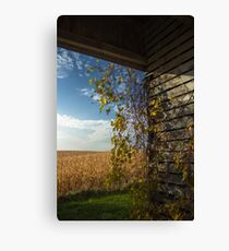 Off the Wall Canvas Print