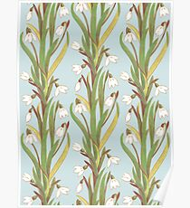 snowdrop flowers pattern grey Poster