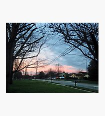 Blue and pink sky with trees and grass Photographic Print