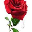 SOME SAY LOVE ..IT IS A FLOWER.. by ✿✿ Bonita ✿✿ ђєℓℓσ