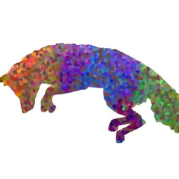 Rainbow Fox by Axylious