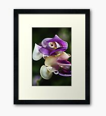 In A Twist Corkscrew Flower Framed Print