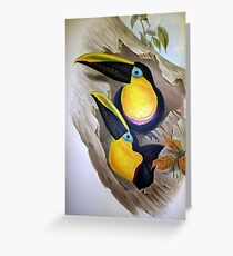 John Gould's Monograph of the Ramphastidae, or Family of Toucans, published Greeting Card