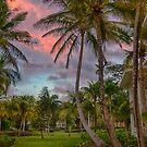 Riu Merengue Sunset by Adam Northam