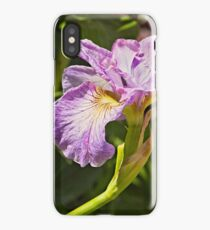 Iris at Butchart Gardens iPhone Case/Skin