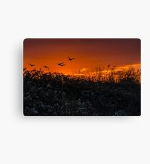 Sunset Freedom Canvas Print