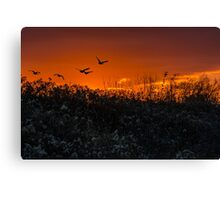 Sunset Freedom Canvas Print