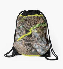 Boomslang Drawstring Bag