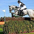 Splendid Jump by Kathryn Potempski