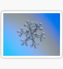 Three-in-one, real snowflake macro photo Sticker